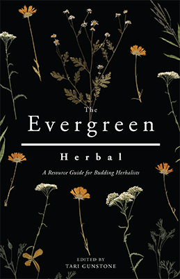 The Evergreen Herbal