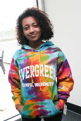 Tie Dye Arched Evergreen Hoody