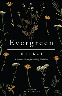 The Evergreen Herbal:A Resource Guide For Budding Herbalists